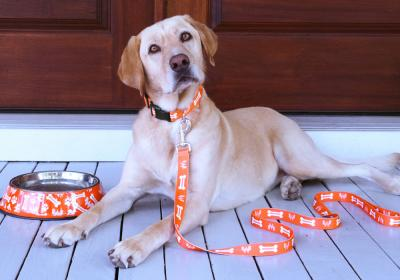 Whataburger leash and dog.