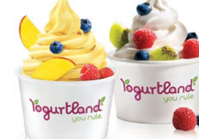 Yogurtland offers more than a dozen flavors at any given time.