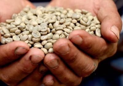 Quick serve chicken chain rolls out coffee that benefits bean growers.