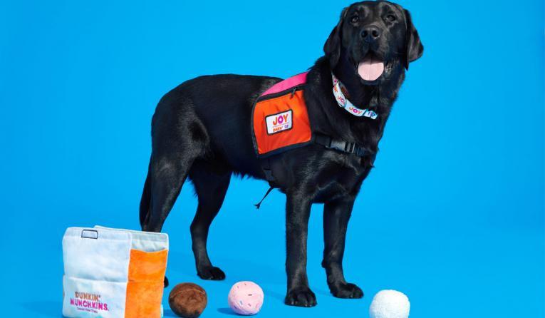 Dunkin' dog toys with black dog.