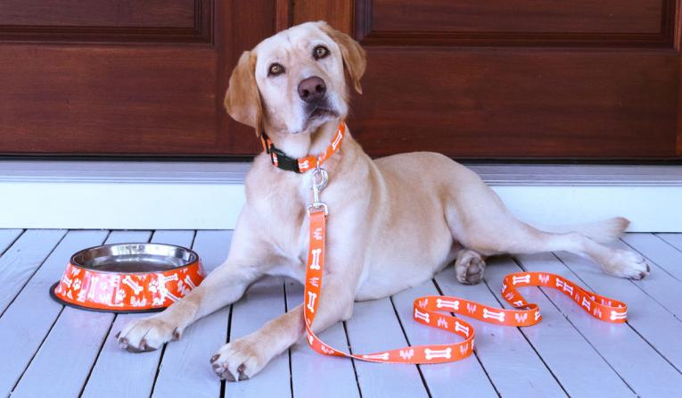 Whataburger leash and dog.