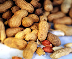 Peanuts are one of the Big 8 major food allergens.