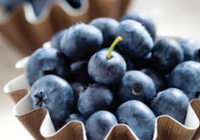 Superfoods like blueberries offer nutritional and flavorful menu potential.
